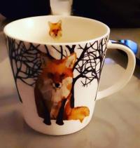 foxy leslie